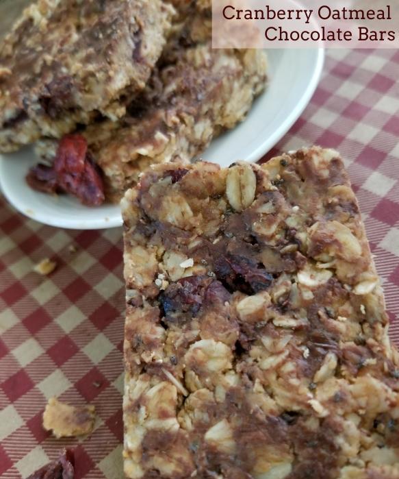 Cranberry Oatmeal blog w text.jpg